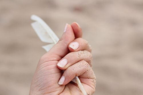 爪を削らずにジェルネイルを楽しみたい方におすすめ!パラジェル&シャイニージェル